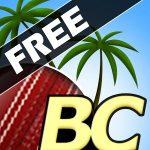 Beach Cricket MOD APK